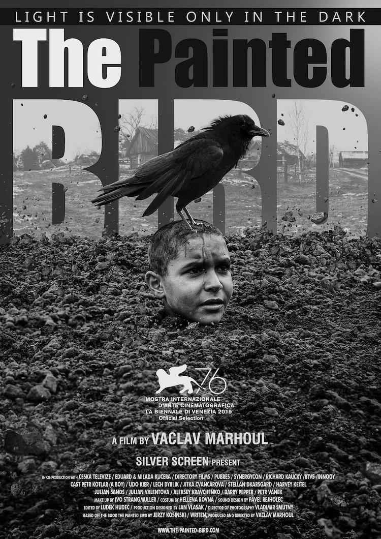 电影《被涂污的鸟》:天下乌鸦一般黑?