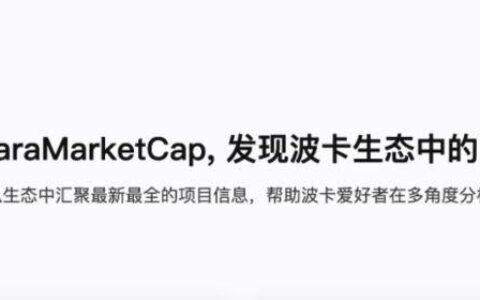 PolkaWorld 推出波卡生态信息聚合网站 ParaMarketCap!