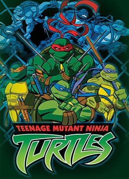 忍者神龟 第二季