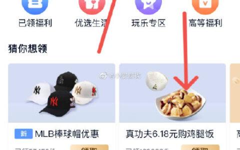 爱奇艺VIP 菜单栏会员-导航栏领福利-真功夫冬菇鸡饭,