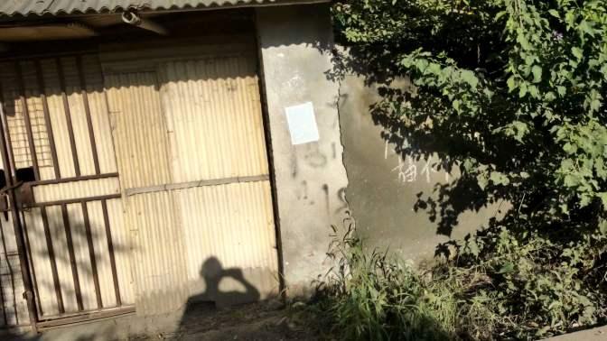 上海松江农村:这环境,这院落,免费给你,你敢住吗