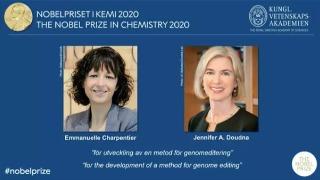 2020年诺贝尔化学奖得主自述:基因编辑技术将把我们带向何方?