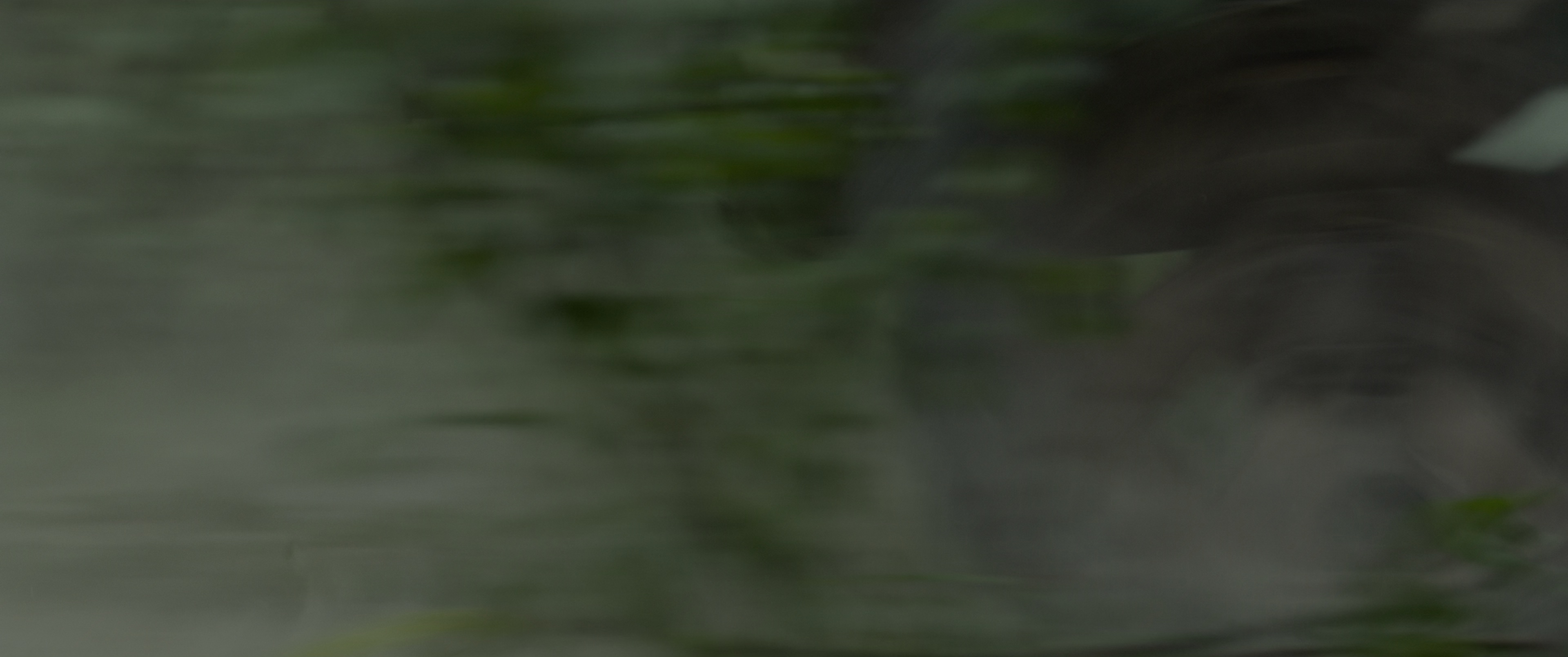 悠悠MP4_MP4电影下载_[门徒][BD-MKV/25.12GB][中文字幕][4K-2160P][HDR版本][H265编码][动作,杀手,美国,犯罪,女性,惊悚,剧情]