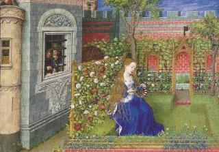 """包慧怡:西方文学中的""""玫瑰""""意象,是诗人们长久的秘密"""