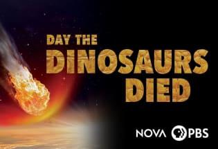 PBS Nova 恐龙灭绝之日
