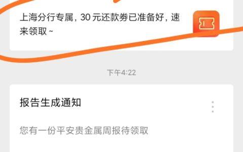 上海地区 平安银行30还款券