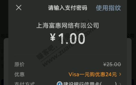 VISA 1元 不卡了