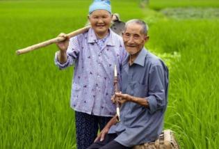 十年观察,我发现知识分子对中国农民的误解太深