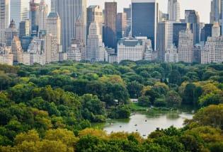 中央公园,纽约的永恒绿洲和庇护所