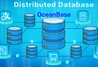 中国数据库告别卡脖子之忧:OceanBase霸气卫冕,性能领先第二名11倍,二十万亿行代码100%自研