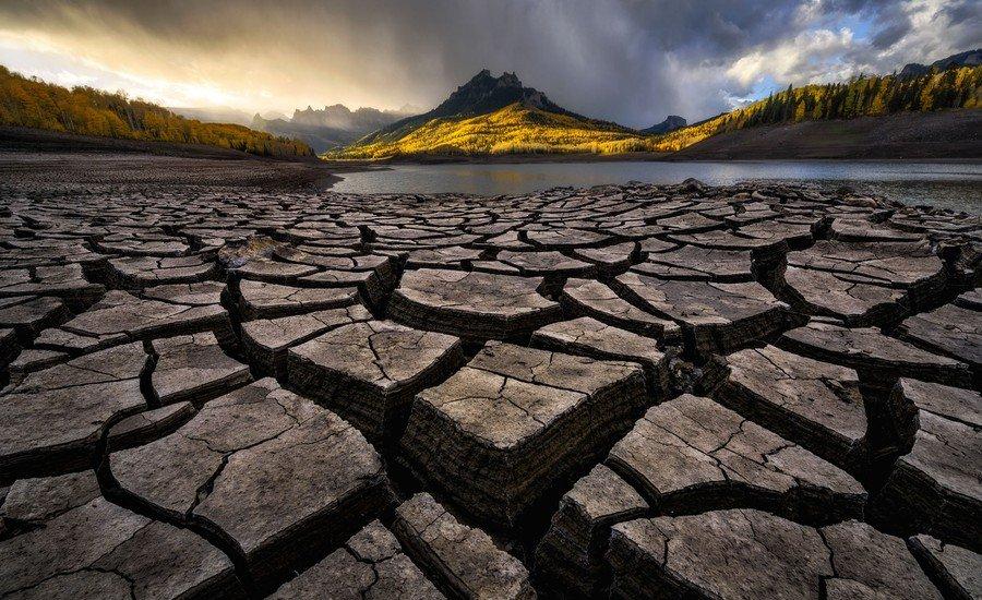 ©                                                                Zack Clothier / Wildlife Photographer of the Year