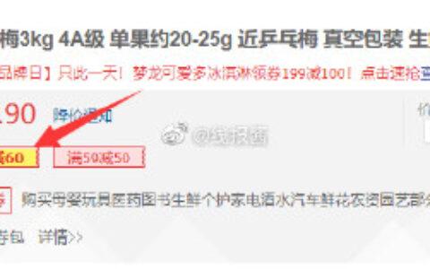浙江 仙居东魁杨梅3kg Plus标题下领券 9.9元+运费券浙