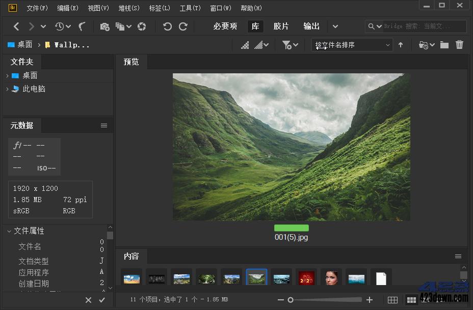 Adobe Bridge 2021 (11.1.1.185.0) Repack