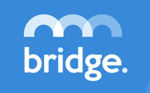 一文读懂 Bridge Mutual