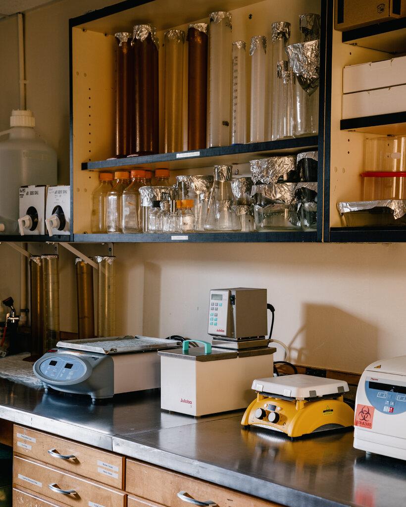 杜兰大学实验室的研究带来了药物和疫苗的发明。