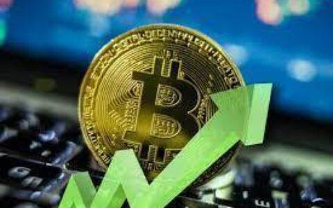 全球主权基金开始布局比特币