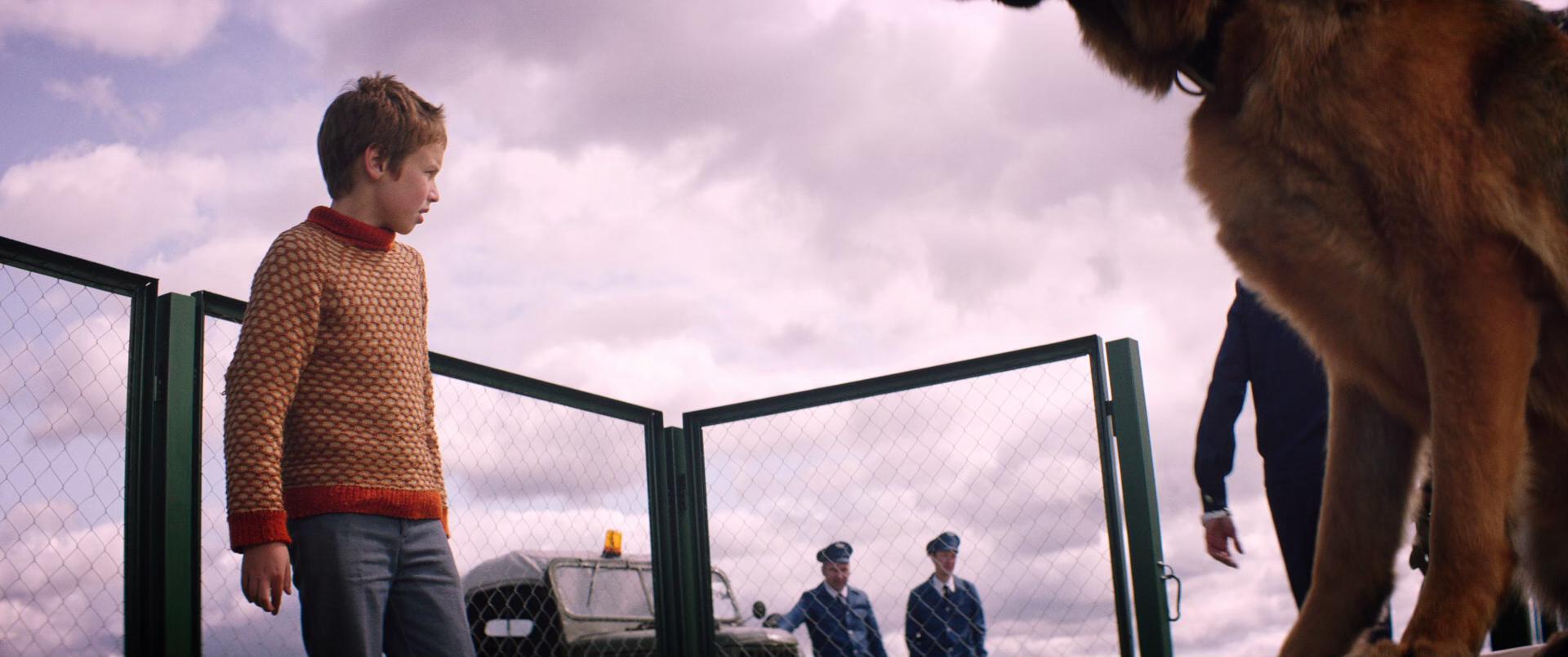 悠悠MP4_MP4电影下载_[忠犬帕尔玛][BD-MKV/10.26GB][简繁字幕][1080P][H265编码][狗,动物,俄罗斯,感人,剧情,2021观影,欧洲电影]