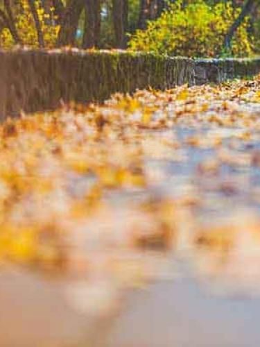 【森萝财团视频】 森萝财团写真 – JKFUN-054 红布鞋白丝 13D白丝 小夜 [高清原版视频在线播放]