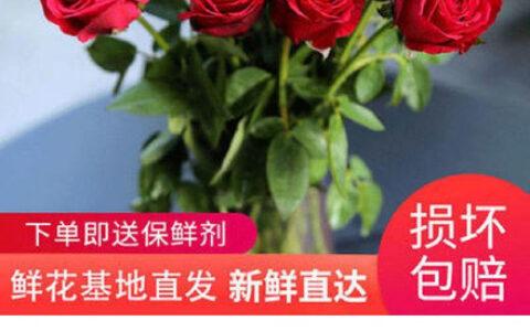 【拼多多】微信扫图片马玫瑰花云南昆明基地直发20支【