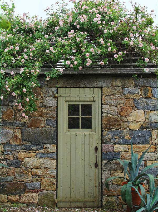 馥郁的爬藤玫瑰可以把香气带到二楼,或是让入口充满芳香。图中是香气温和,会重复开花的新黎明。