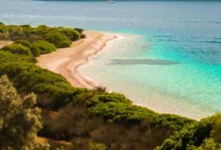 希腊遭遇40年来最强热浪 当局呼吁民众提高警惕