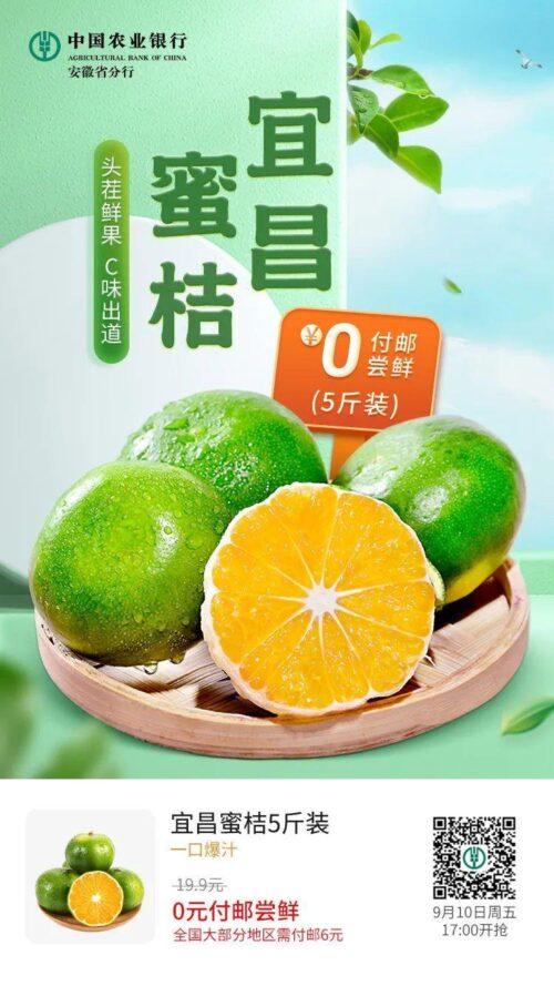 6元5斤橘子,自辨