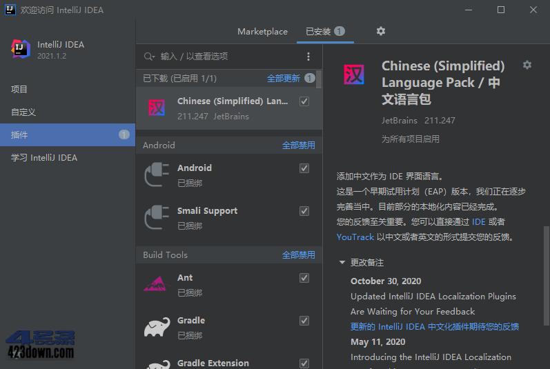 JetBrains中文语言包插件2021.2.x v212.231