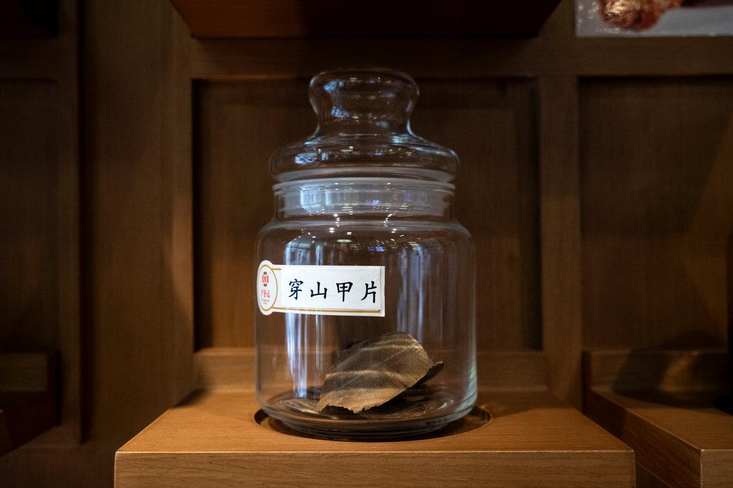 北京一家中药店出售的穿山甲片。