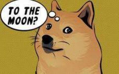 浮盈超过150亿美元,这个狗狗币地址或与马斯克有关