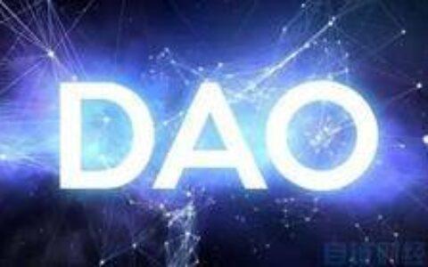 自动化奥斯特罗姆(Ostrom)以实现有效的DAO管理