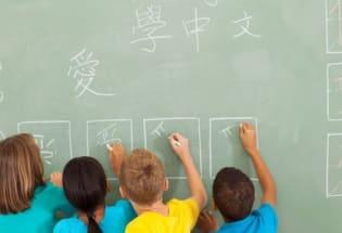 台湾语言学习中心进军美国, 挑战中国的孔子学院?