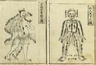 为什么中国不曾有过科学、宗教或哲学?