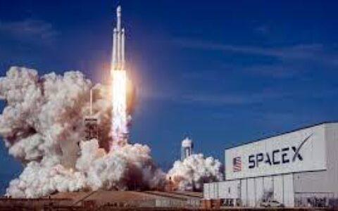 SpaceX接受狗狗币支付 多个动物概念币单日涨幅翻倍