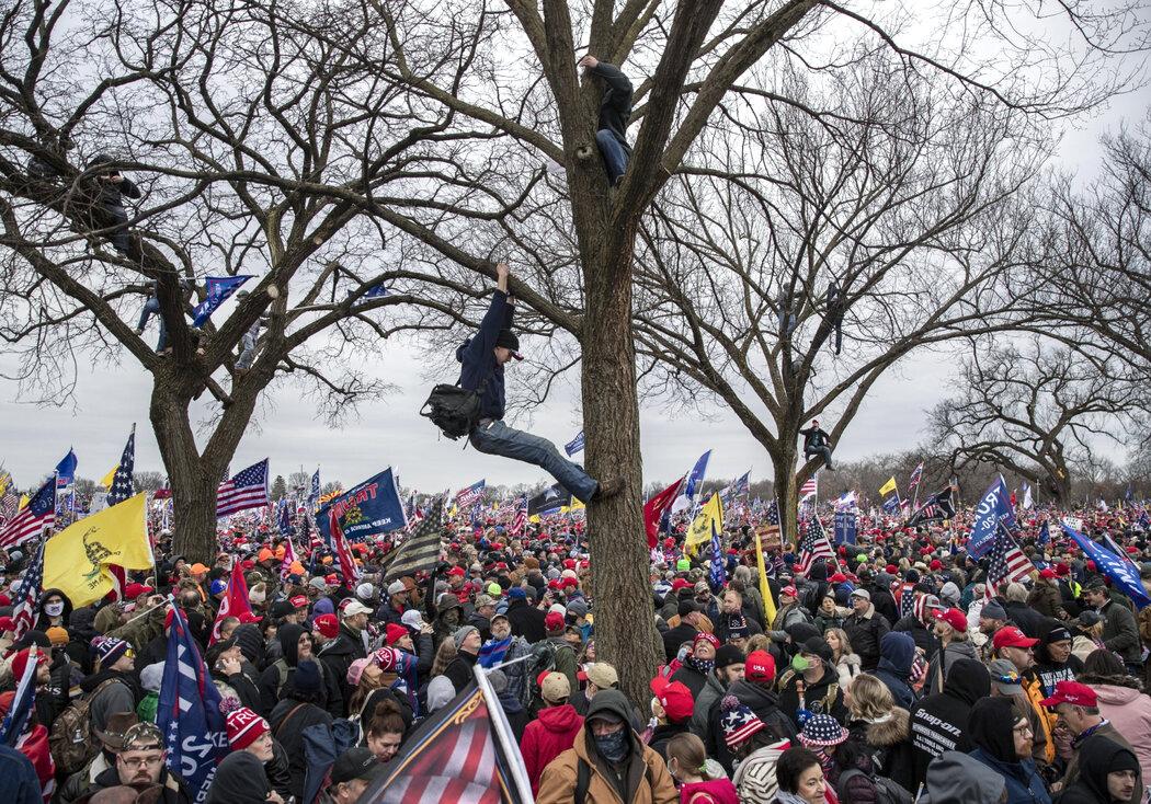 对于周三在华盛顿纪念碑附近集会的特朗普总统支持者来说,他说自己赢下大选就已经足够了。