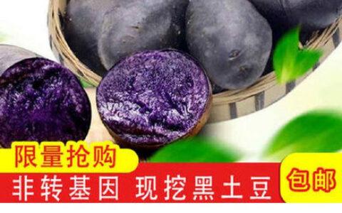 【拼多多】微信扫图片码紫马铃薯3斤【8.6】山东丰水梨