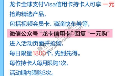 龙支付Visaxing/用卡一元购