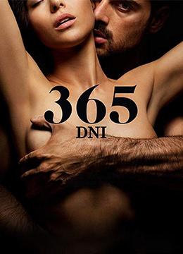 黑帮大佬和我的365日