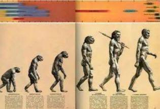 人类的演化已经走到了尽头?