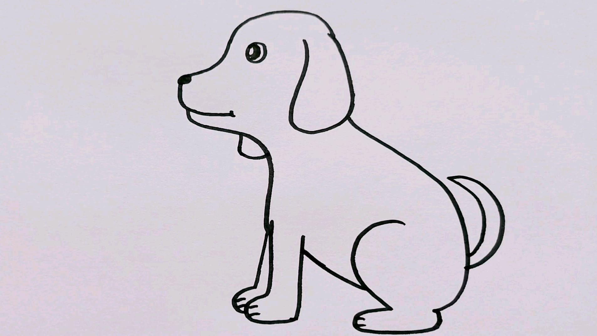 可爱的小狗简笔画视频教程