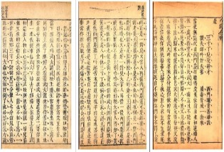 """汤超骏 朱玉麒︱""""三寸丁谷树皮""""的误读"""