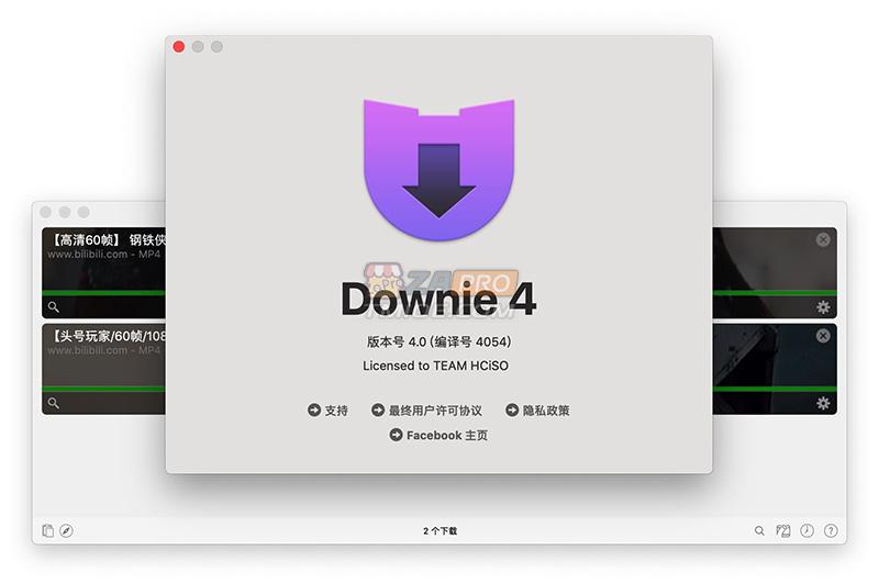 Downie4 -1.jpg