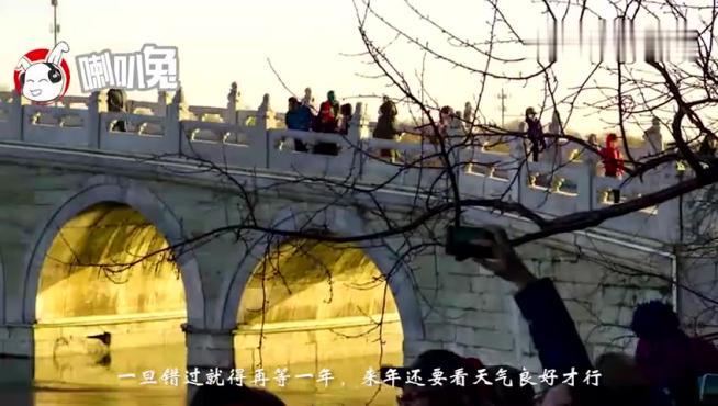 """冬至颐和园迎来十七孔桥""""金光穿孔"""",引来数万人围观,景色罕见"""