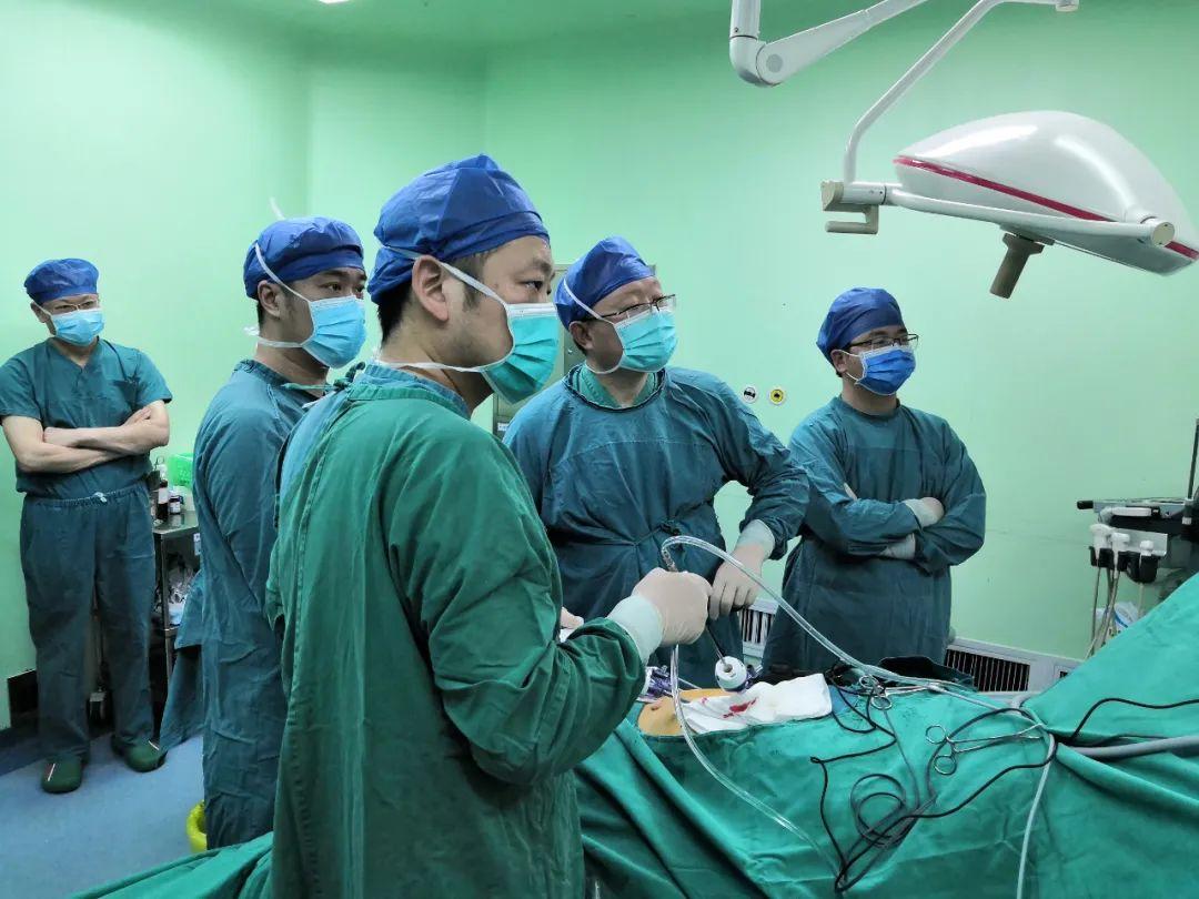 肝脏肿瘤现「原形」!3D 图像让手术精准定位、完美切除