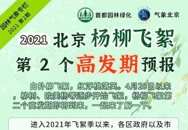 2021北京杨柳飞絮第2个高发期预报