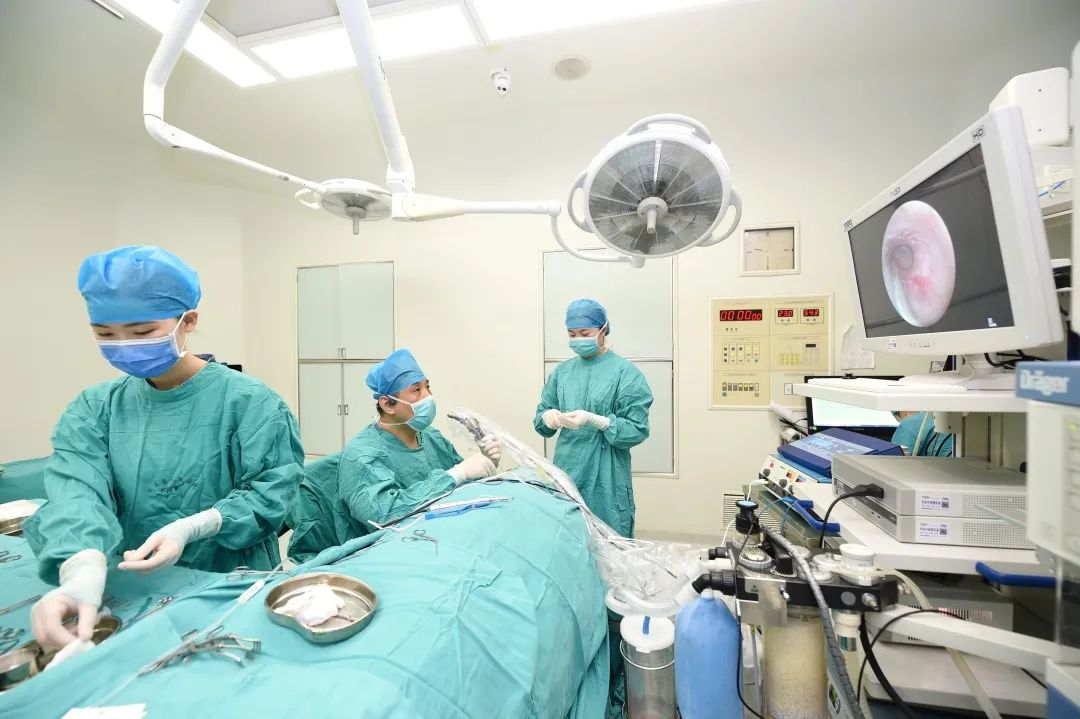 河南省首例全耳内镜下前庭窗开窗+人工镫骨植入术成功开展