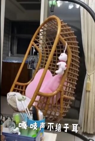 臺灣5.8級地震曝光!女子拍下5.8級地震時家中詭異一幕 視頻曝光網友炸鍋