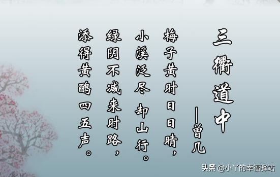 三衢道中古诗意思(三衢道中译文及注释)