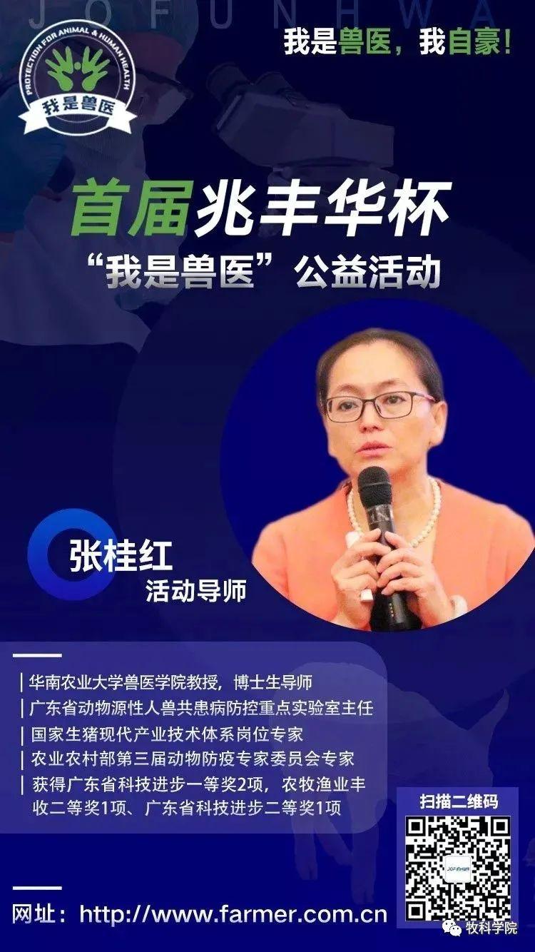 张桂红:让兽医真正成为一个受人尊敬的职业
