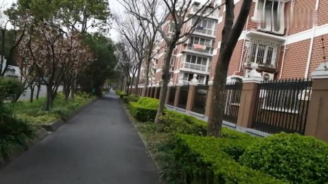 上海杨浦区政悦路,两边风景好,原来1930年,这里有个大上海计划