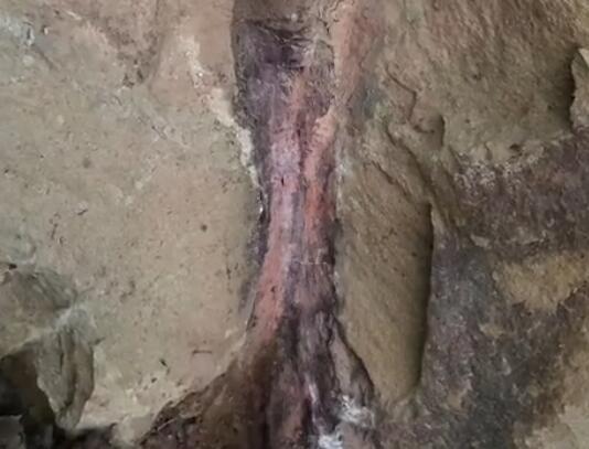 四川一男子散步发现1米长古怪石头 仔细一查让人大开眼界到时有何奇特